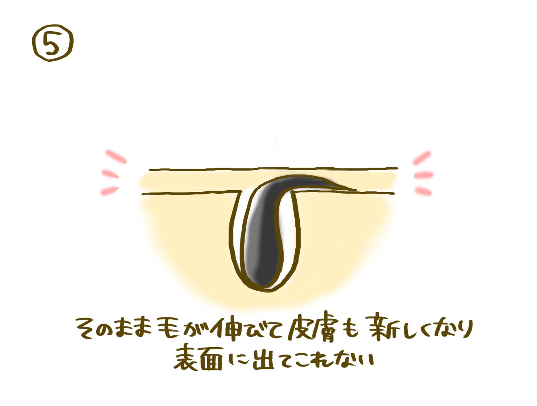 maibotsumou_11